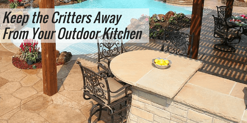 Unwanted Guests? How to Keep the Critters Away From Your Outdoor Kitchen